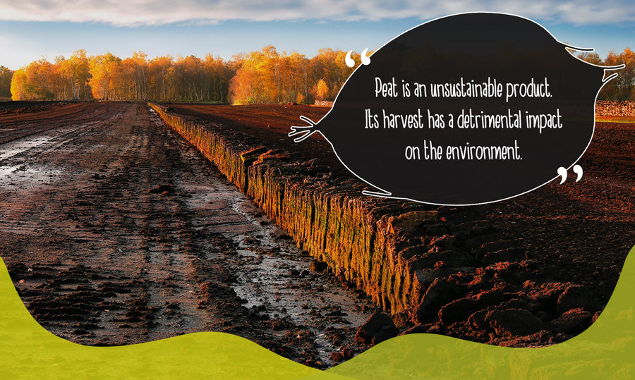 A peat bog being farmed unsustainably for gardening soil