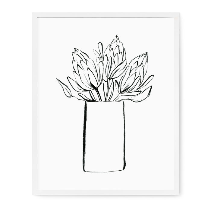 Floral Line Drawings - Proteas Print