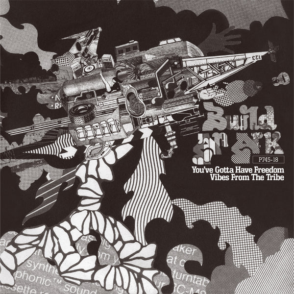 BUILD AN ARK『You've Gotta Have Freedom / Vibes From The Tribe』7inch