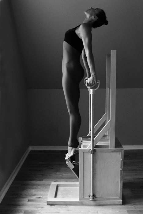 Gratz Gallery | Kathryn Ross-Nash performing the Press Up Front Standing exercise on the Electric Chair