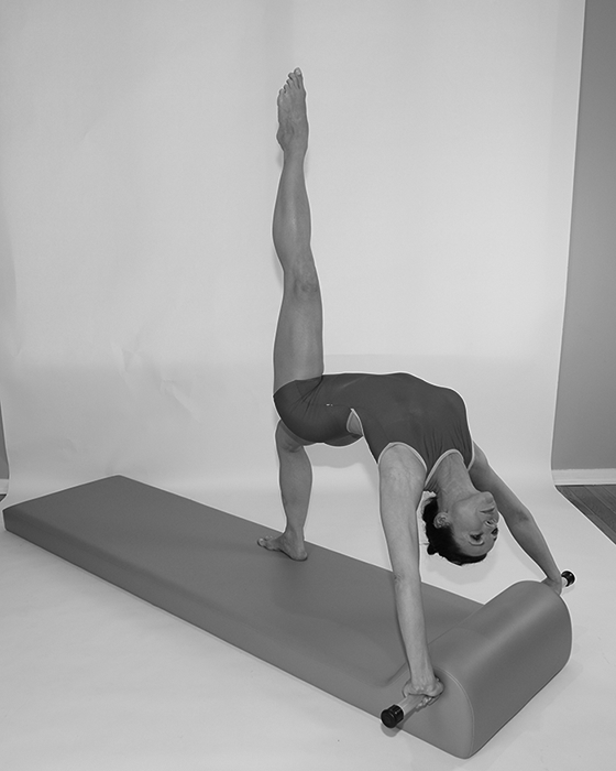 Gratz Gallery | Kathryn Ross-Nash performing a High Bridge exercise on the Contour Mat