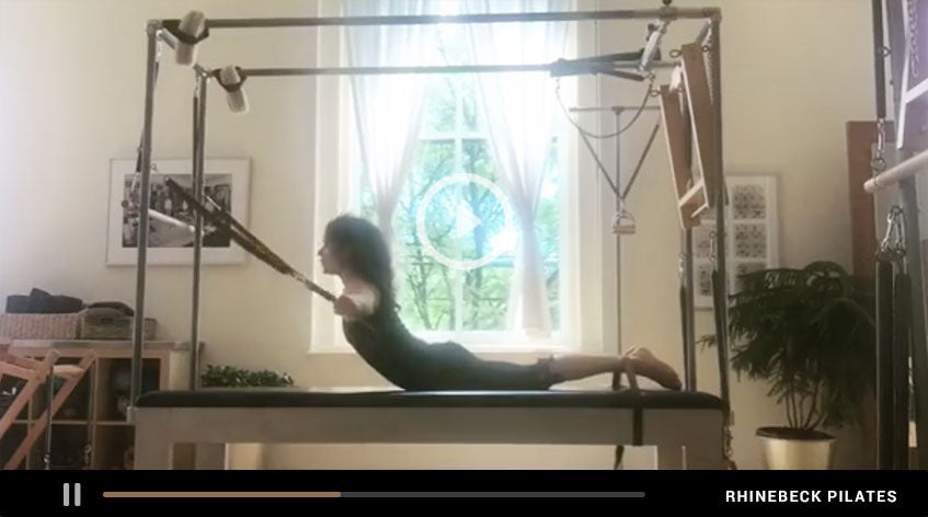 Flying Eagle On The Cadillac | Something Moves By Elaine Ewing | Rhinebeck Pilates