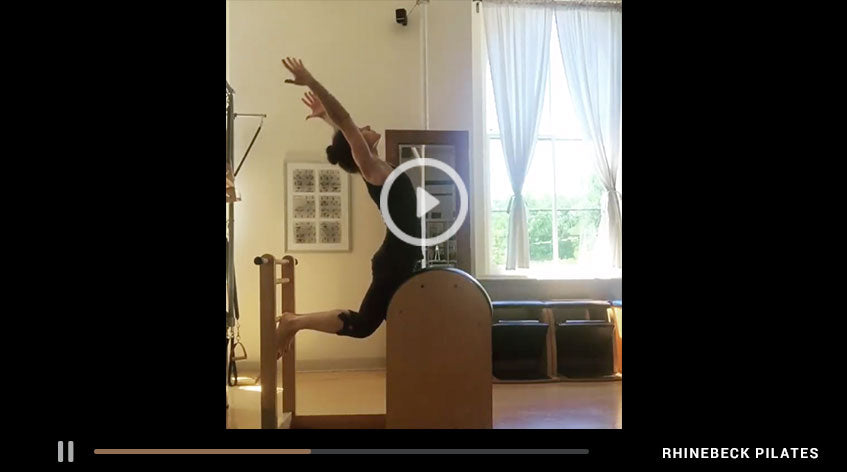 Swan On The Ladder Barrel | Something Moves By Elaine Ewing | Rhinebeck Pilates