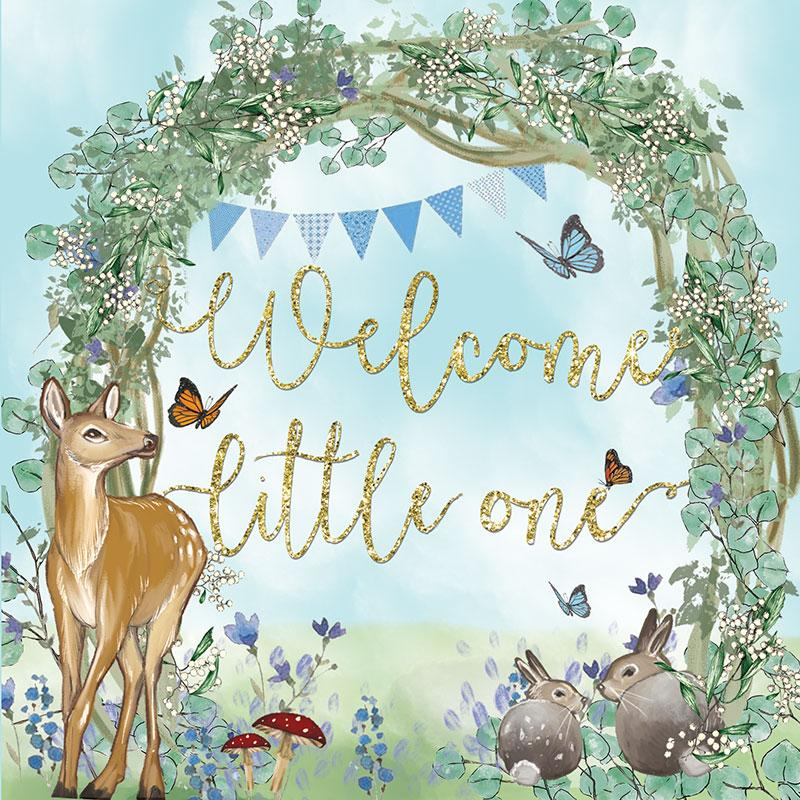 Welcome Baby Blue Greeting Card