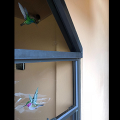 Hummingbird Window Cling from Window Flakes