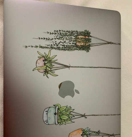Illustrated Hanging Plant Laptop Sticker Beautiful Non Adhesive Sticker by Window Flakes