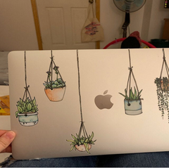 Beautifully Illustrated Hanging Plant Laptop Stickers by Window Flakes Colorful