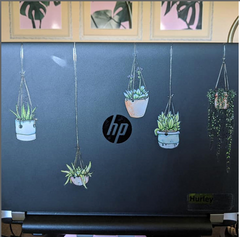 Illustrated Colorful Hanging Plant Laptop Stickers by Window Flakes