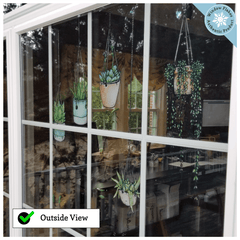Illustrated Hanging Plants Window Clings, Wall Stickers and Laptop Stickers