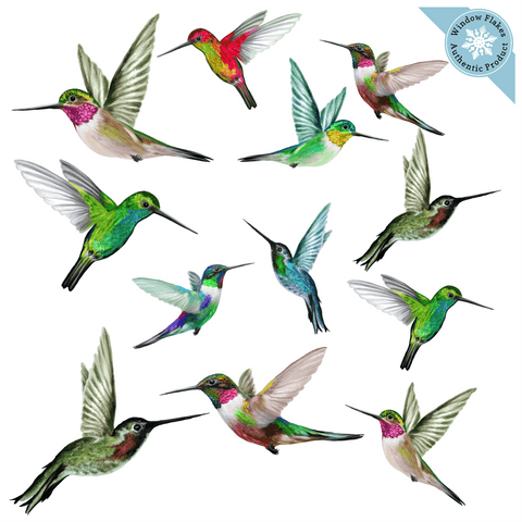 Anti-Collision Window Clings - Hummingbirds - Set of 12
