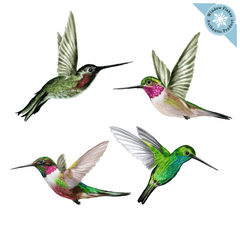 Anti-Collision Window Clings - Hummingbirds - Set of 4