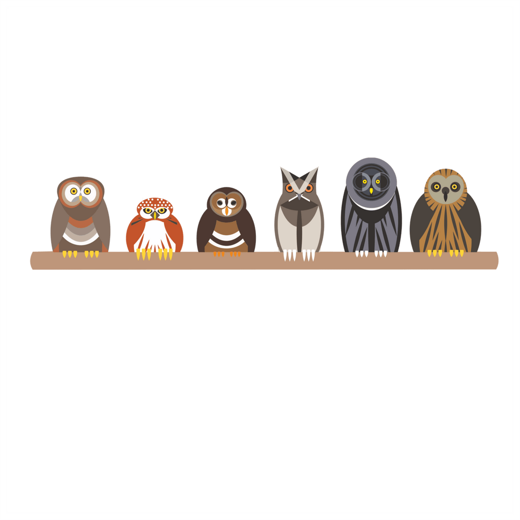 Owl Wall Stickers - Parliament of Owls Wall Sticker Decoration