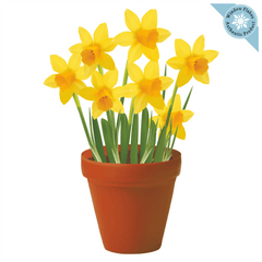 Daffodils Plant / Potted Flowers Window Cling from Window Flakes - Home, Office Retail store decoration Spring Decor