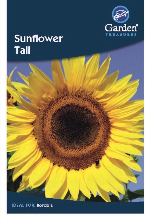 Sunflower Tall