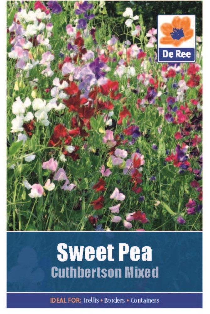 Sweet Pea: Cuthbertson Mixed Seeds