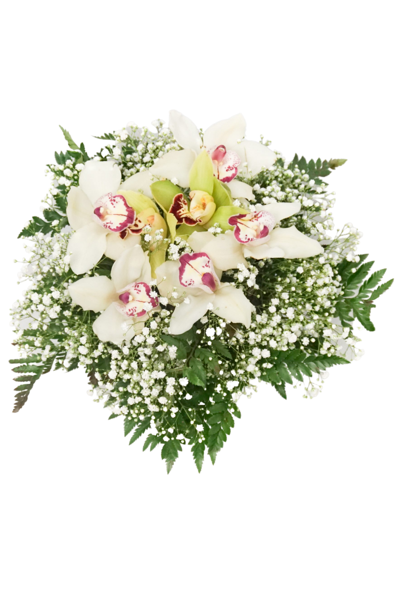 Bouquet di Orchidee - Coco