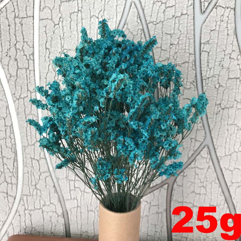 Naturally Preserved  Crystal Love Grass Forget me Flowers