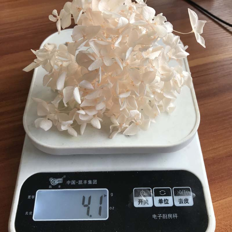 High Quality Naturally Preserved Hydrangea Flower Head