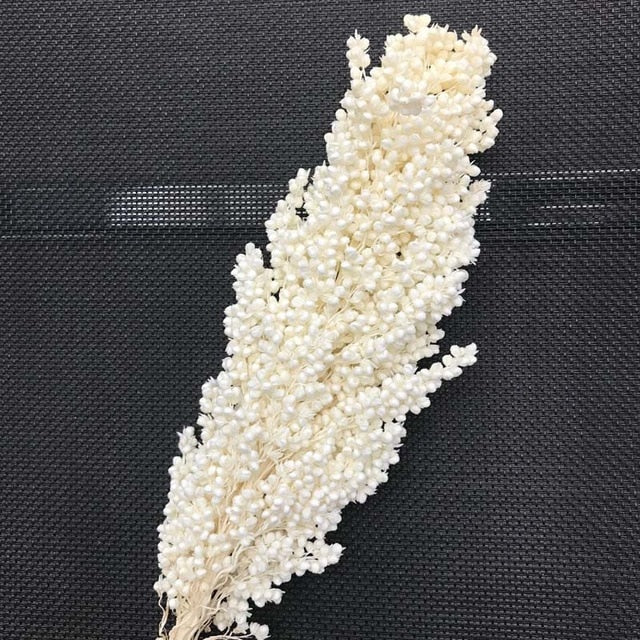 Naturally Dried Real Sorghum Flower Bouquet