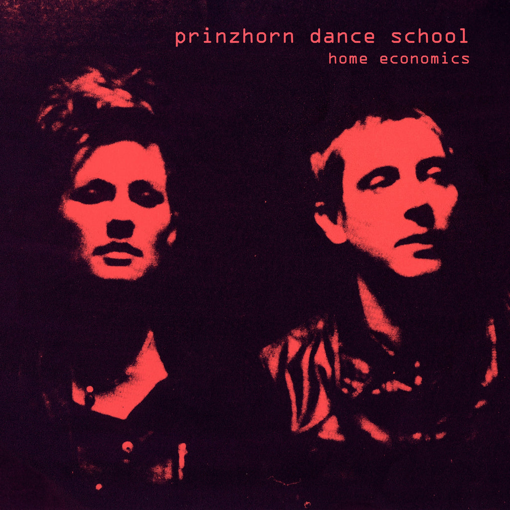 Prinzhorn Dance School - Home Economics LP