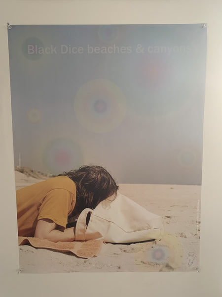 Black Dice - Beaches & Canyons Photo Poster