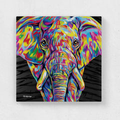Paige the Elephant Canvas Print