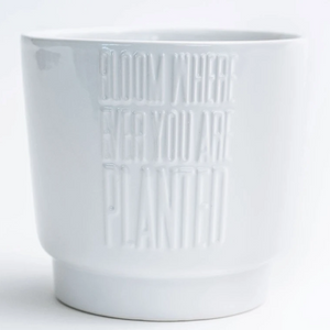 "4.7""x 4.3"" 'Bloom Where Ever You Are Planted' Dolomite Pot"