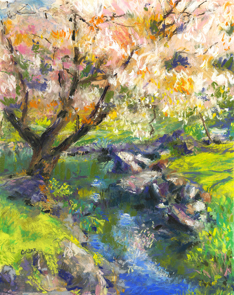 Cherry Blossoms in the Park Pastel