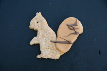 My Pet Naturally Peanut Butter Squirrel Cookie - Large