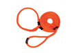 Dog Harness Leads S/M Orange