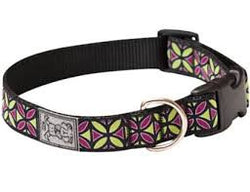 Rc Pet Clip Collars