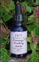 Pet Essences Training / Breaking Habits 1 oz