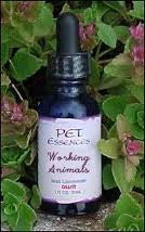 Working Animals by Pet Essences