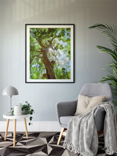 Load image into Gallery viewer, Moringa Tree, Green Leaves, Branches, Sunburst, Sky, Oahu, Hawaii, Framed Matted Photo Print, Living Room Interior, Image