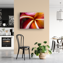 Load image into Gallery viewer, Macro, Pink, Orange, Plumeria Petals, Flower, Oahu, Hawaii, Metal Art Print, Interior Entryway, Image