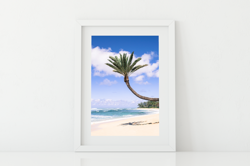 Coconut Palm Tree, Sand, Ocean, Clouds, North Shore, Oahu, Hawaii, Matted Photo Print, Image