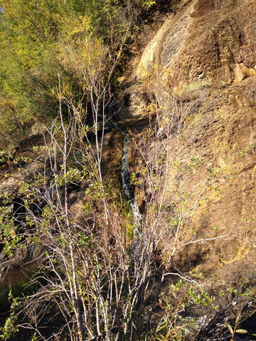 Waterfall on the Rio Grande Trail, Aspen