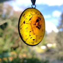 "Load image into Gallery viewer, ""Amber-osia"": Baltic Amber Necklace (G)"