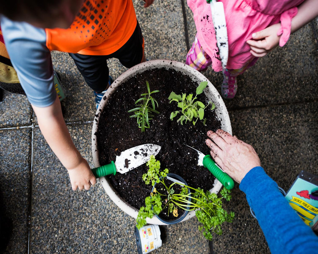Nature Play at Skokie Library