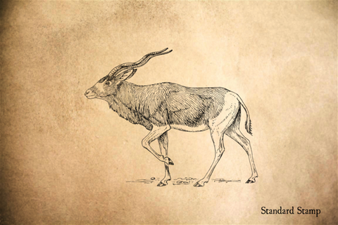 Addax Rubber Stamp
