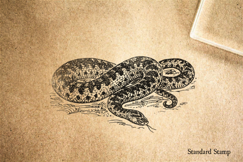 Adder Snake Rubber Stamp