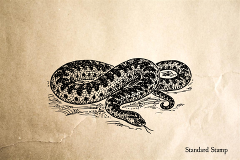 Adder Rubber Stamp