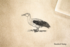 Albatross Standing Rubber Stamp