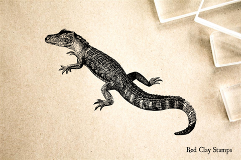Alligator Young Rubber Stamp