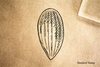 Almond Nut Rubber Stamp