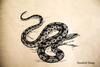 Anaconda Snake Rubber Stamp