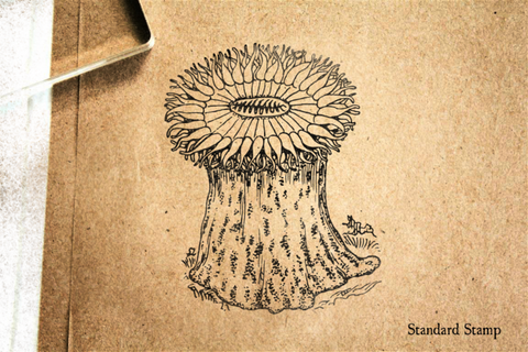Anemone Rubber Stamp