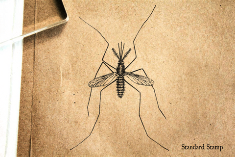 Anopheles Rubber Stamp