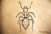 Ant Rubber Stamp