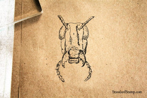 Ant Head Rubber Stamp